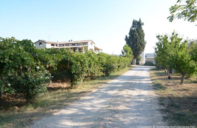 Torre-Mannella-17-Agriturismo